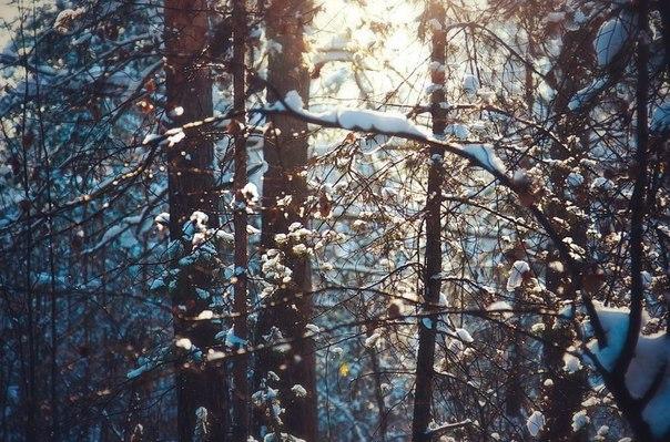 Зима 2013 - Юлия Федорова