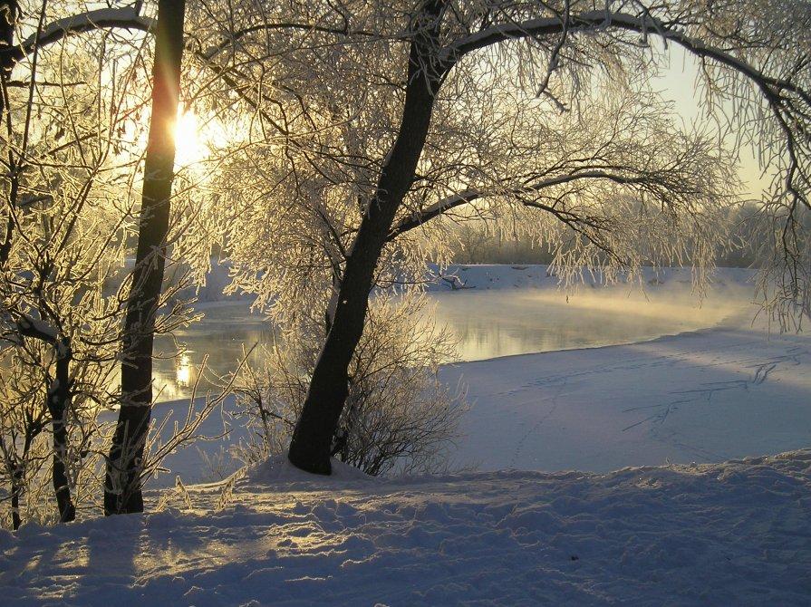 Зимнее солнце - Нина Костина