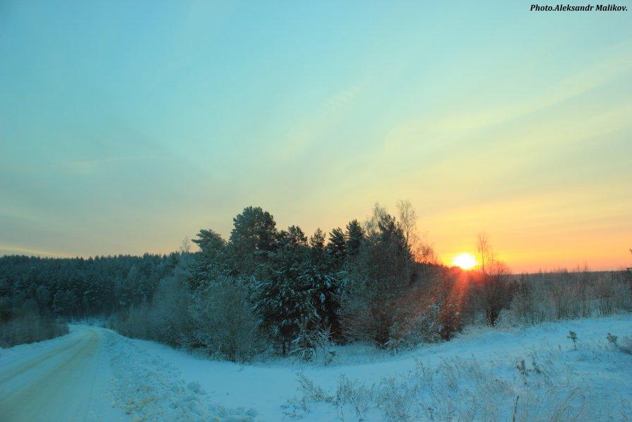 восход над лесом - Александр Маликов
