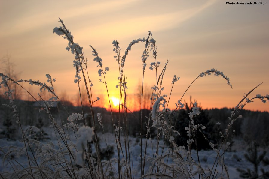 холодный закат - Александр Маликов