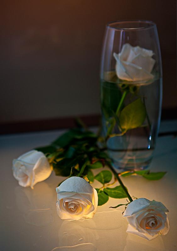 белые розы... - Сергей Яговкин