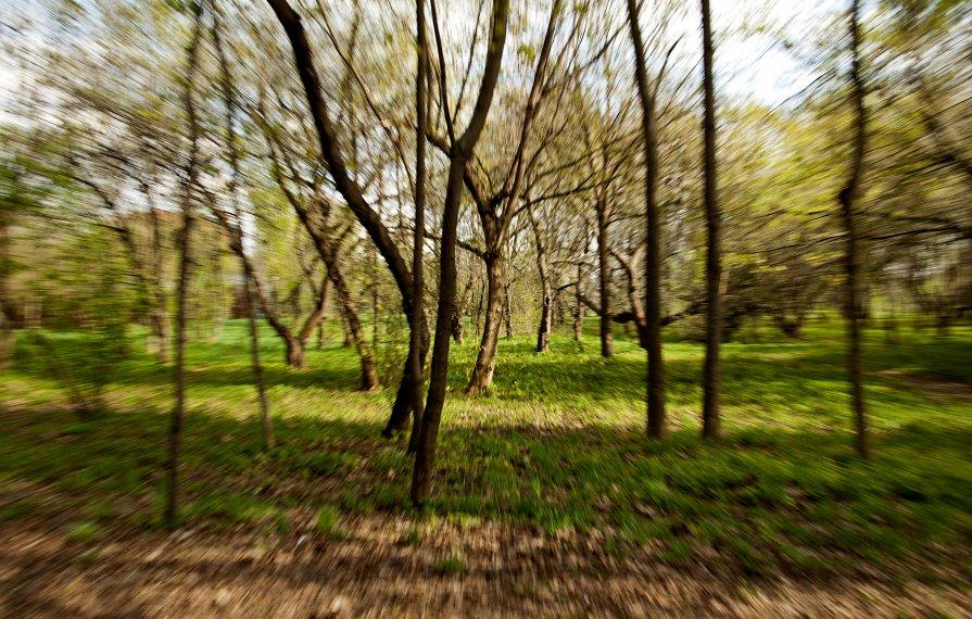 Весна идет - Андрей Егоров