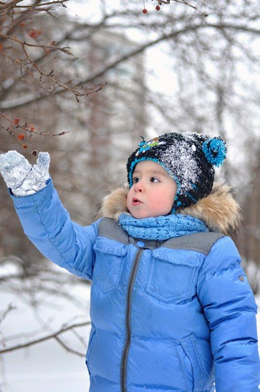 Снежный день - Юлия Makarova