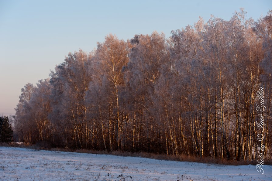 Зимний закат - Igor Epikhin
