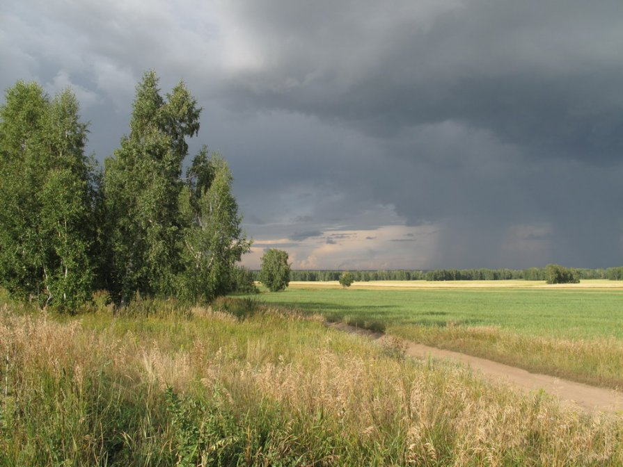 Дождь надвигается - Валентина Хазова