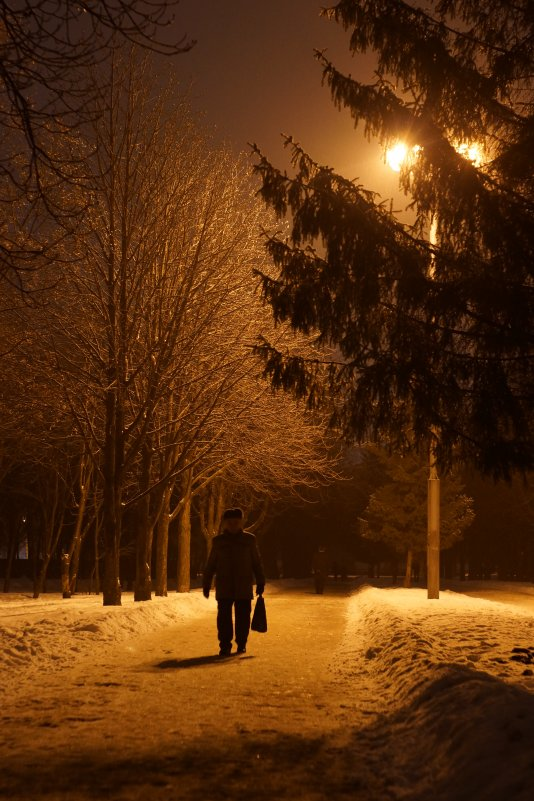 Вечерняя прогулка - константин чувилин