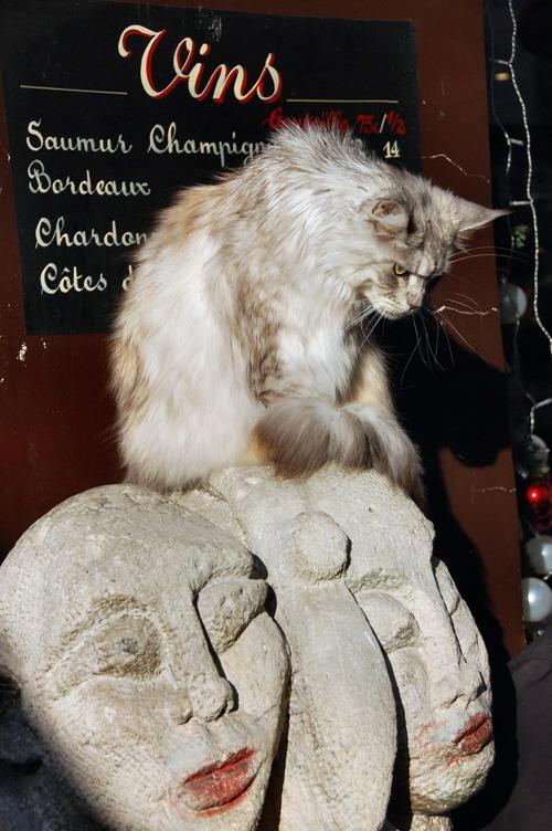 Монмартрский кот - Марина Витушкина