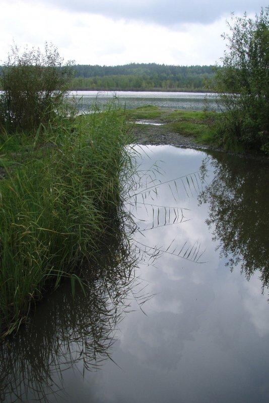 Озеро Белоусово - Сергей Комков