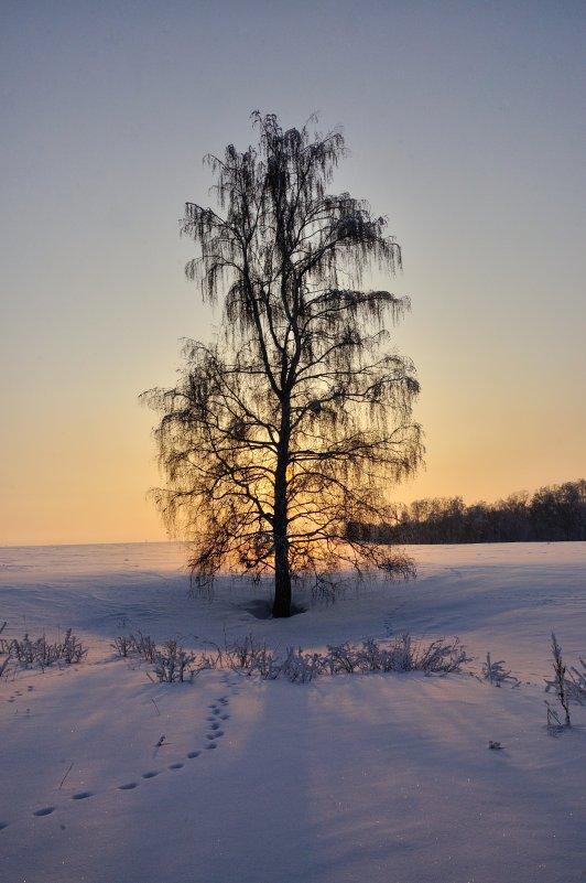 Провожает солнце - Николай Мальцев