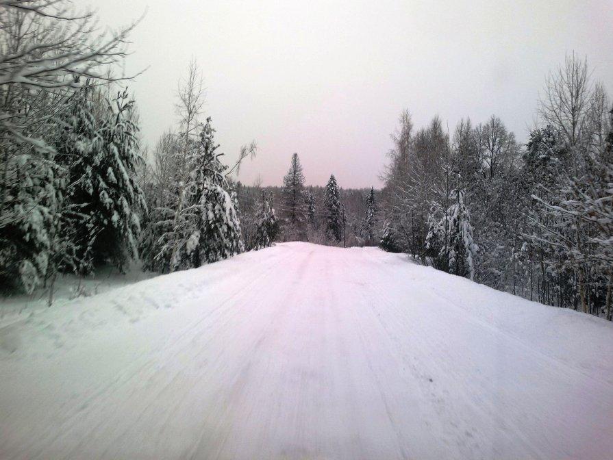 Зимняя дорога - Павел Михалев