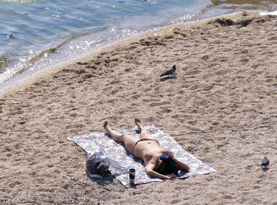 Одна, голубь, солнце и море - Александр Скамо