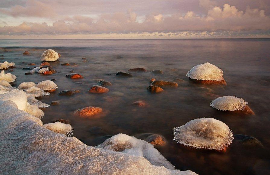 О северных морях - Екатерина Тумовская