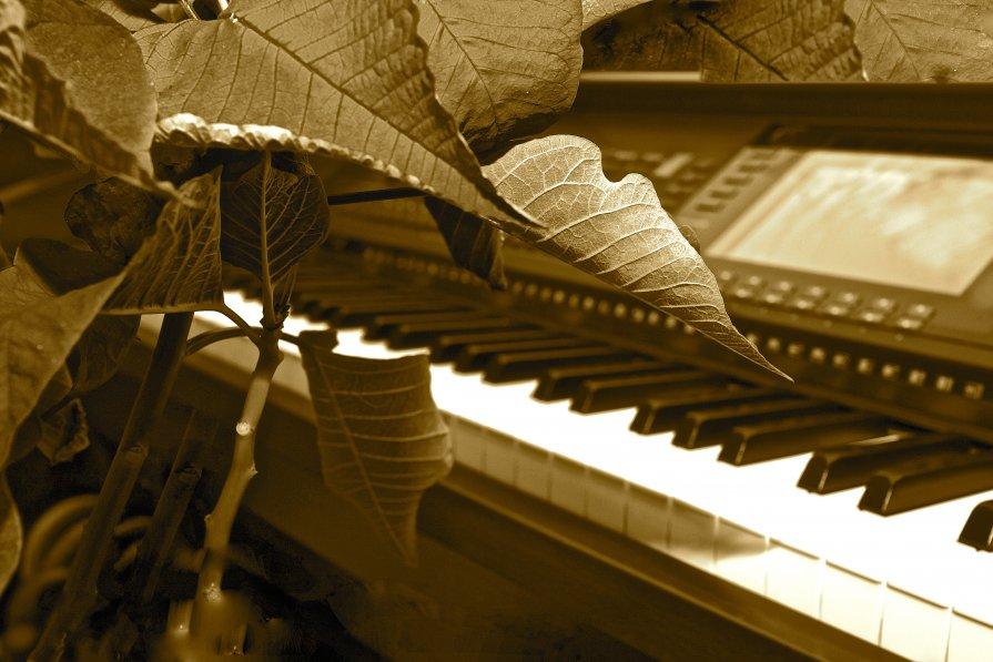 Звуки современной музыки - Виталий Балан