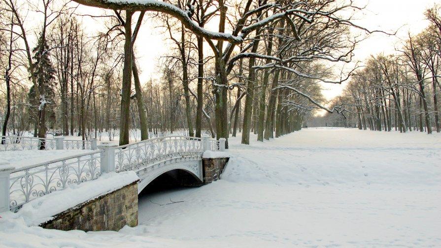 Зимний парк - Олег Попков