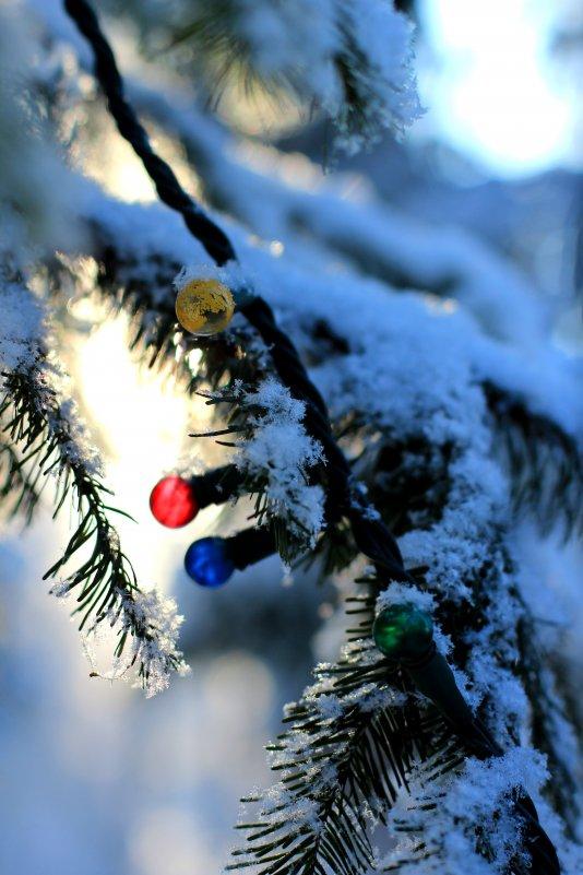 С Новым годом!!! - Радмир Арсеньев