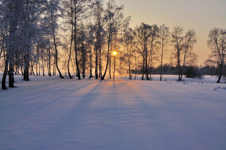 Вечернее настроение - Николай Мальцев