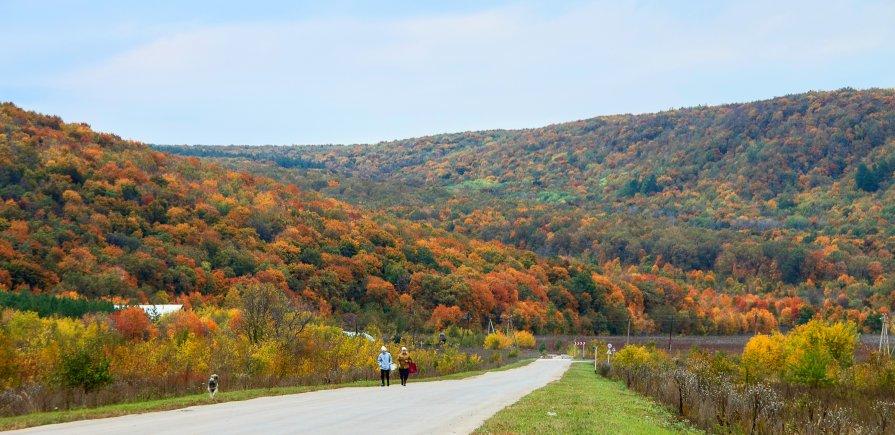 Осень в Жигулёвских горах - Алексей Спирин