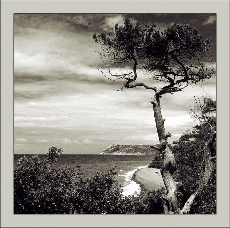 Вид на море вблизи Утриш - Андрей Коптелов