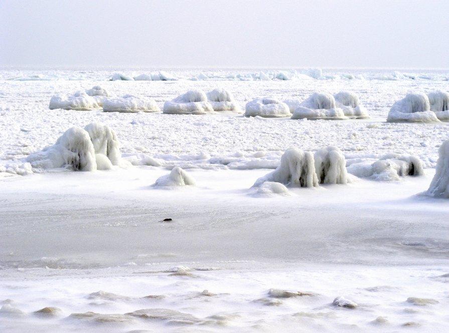 Море замерзло - Александр Скамо