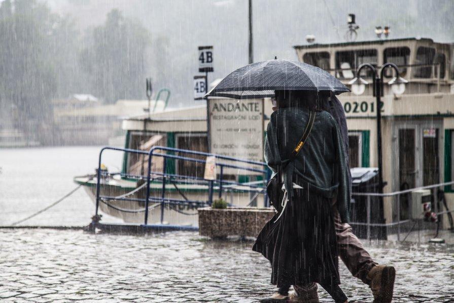 Дождь он и в Праге дождь - Максим Логунов