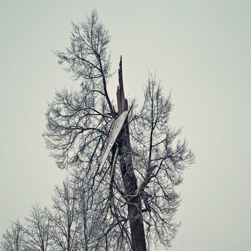 Зима - Zlata Tsyganok