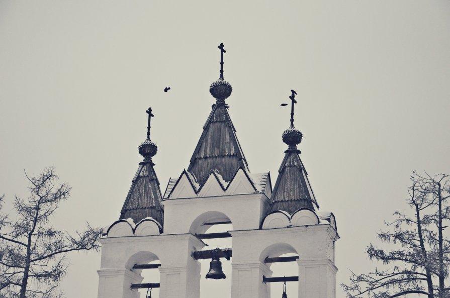 ... - Zlata Tsyganok
