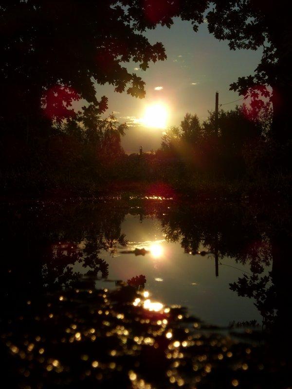 Солнце умывалось перед сном - Ирина Жидович