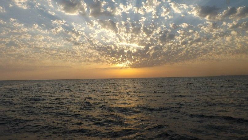 Море - Vika Kleinos