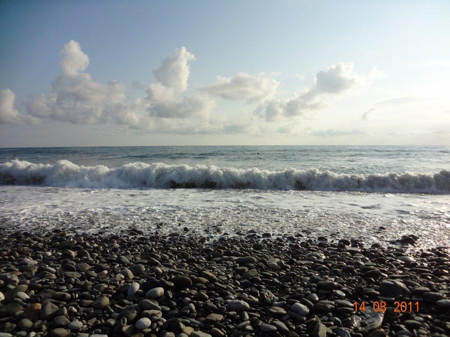 Море Адлер - Катерина Некрасова