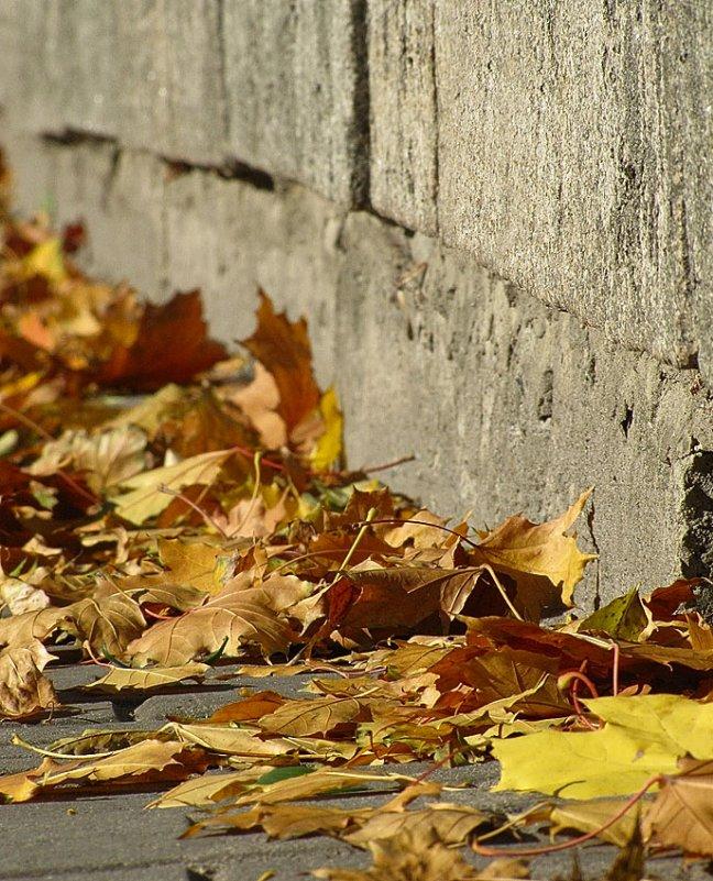 Осенний этюд 2 - john dow