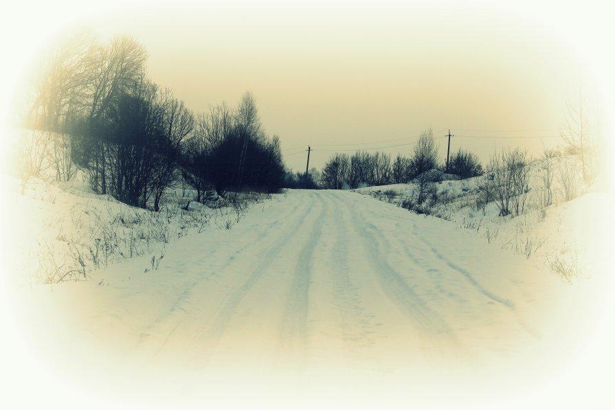 сельская дорога - Светлана Амелина