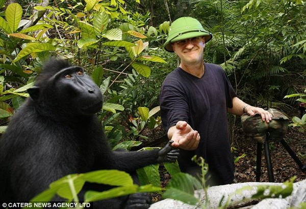 Я люблю животных - Валерий Небесский