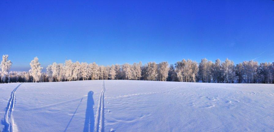 Панорама - Николай Мальцев