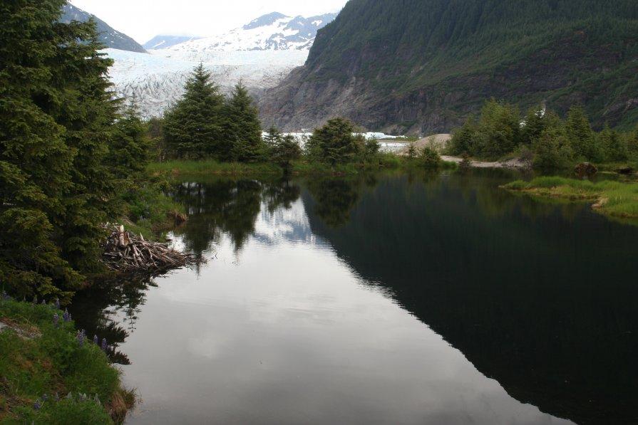 Аляска 2009 - Татьяна Коломиец
