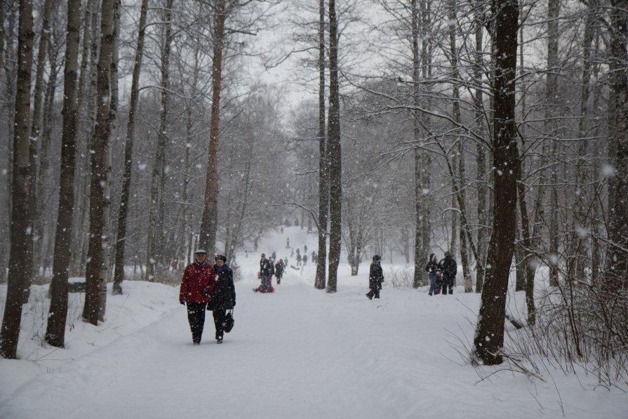 Зимний променад - Ann _V_