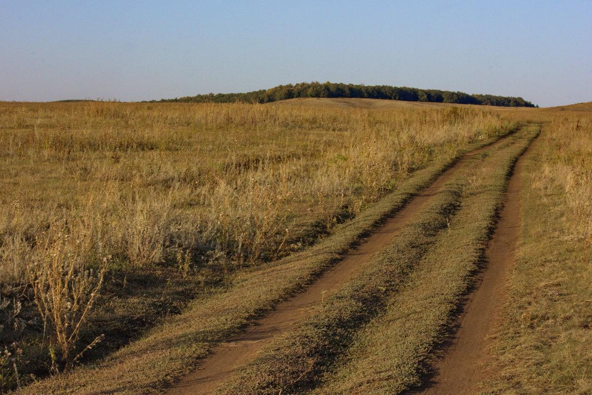 Дорога в осень - Ирина Богатырёва