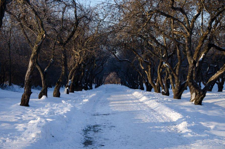 Путь - Станислав Ковалев