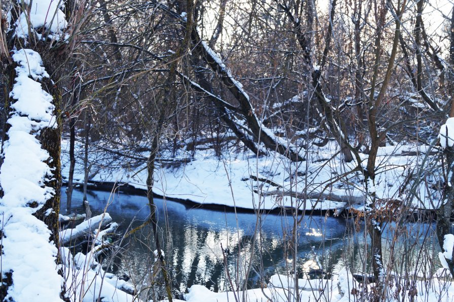 Зимний пейзаж. - Жанна Савкина