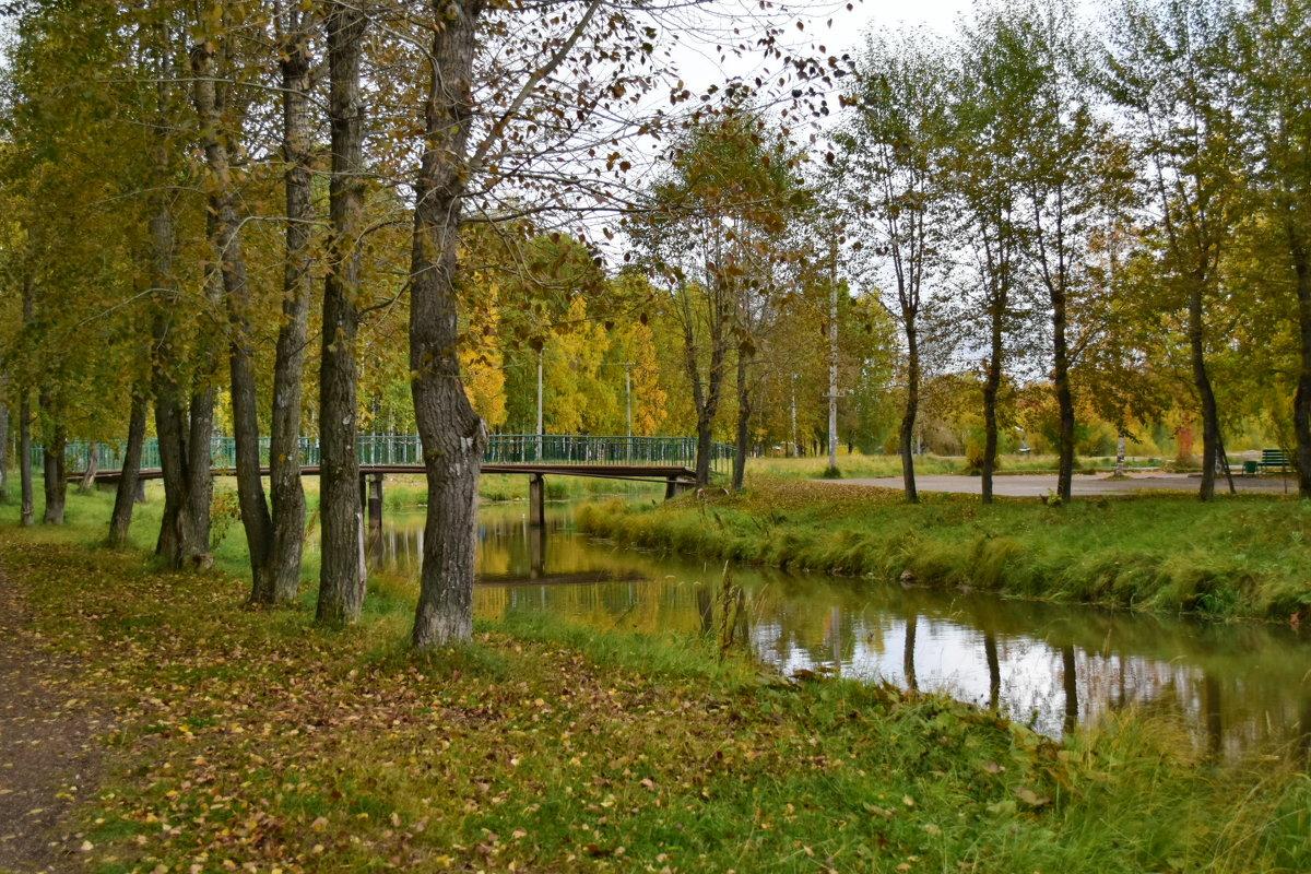 осень - Светлана