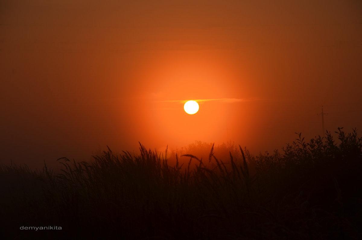 Рассветное сонце - demyanikita