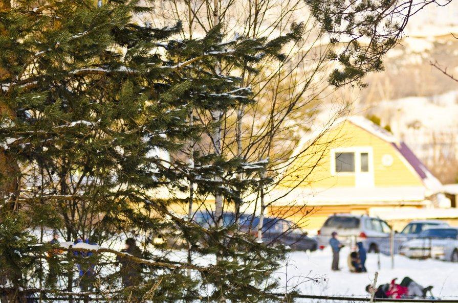 Лыжная база в Сосновке - Роман Кормин