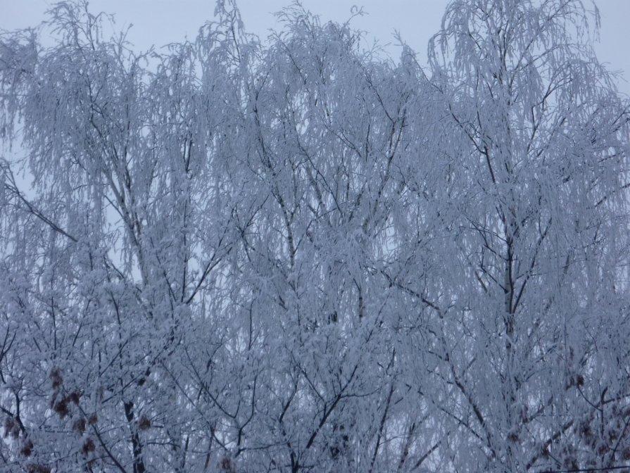 Зима - Tatiana Rassvet