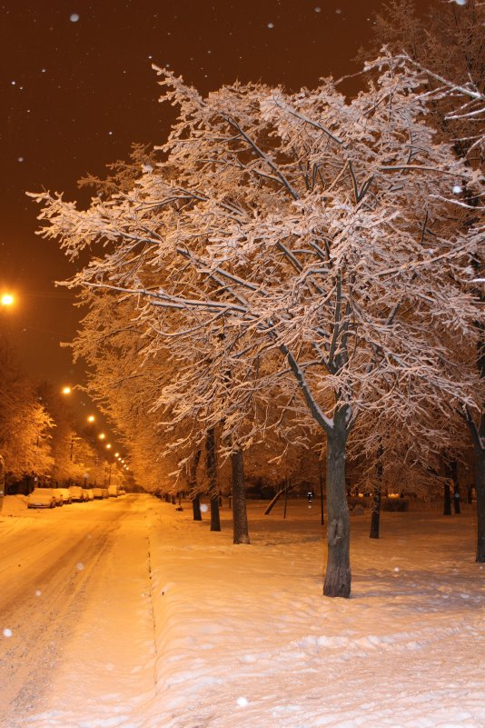 Зимняя дорога - Наталья Наталья