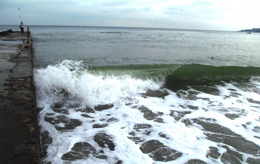 Январская волна - AV Odessa