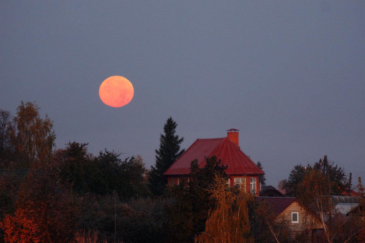 Утро с красной луной - Светлана Карнаух