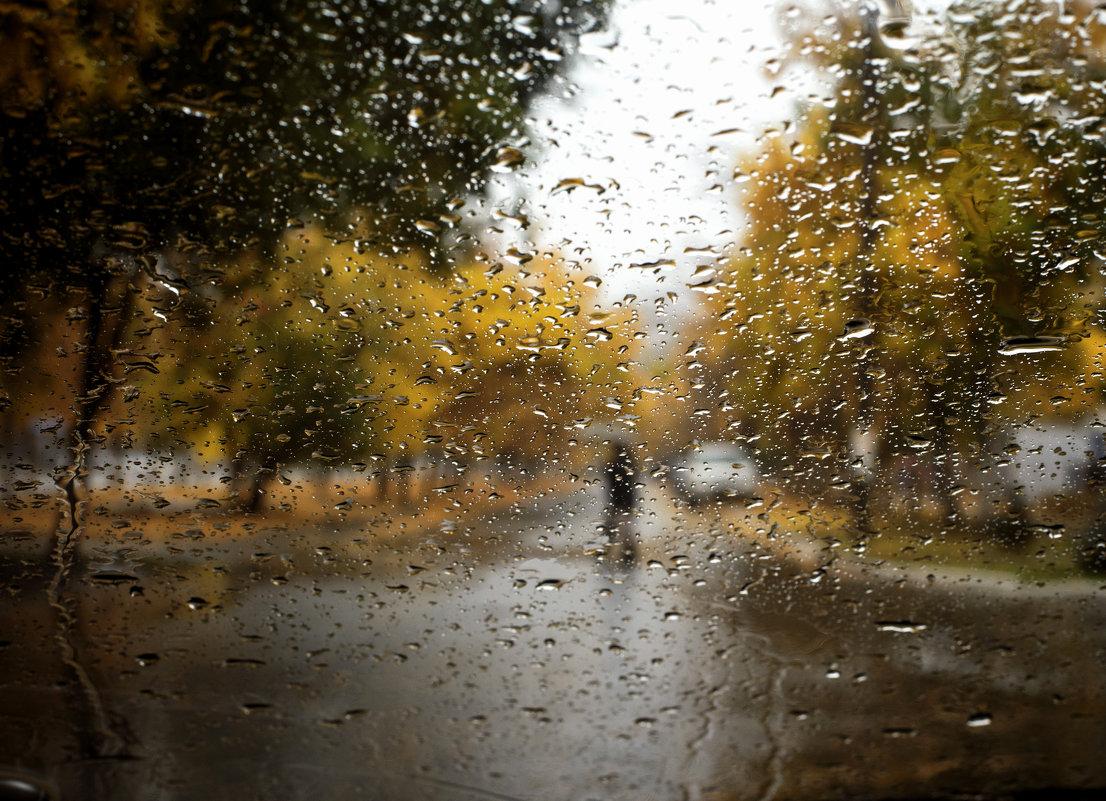 Мокрый пейзаж с зонтом - Татьяна Курамшина