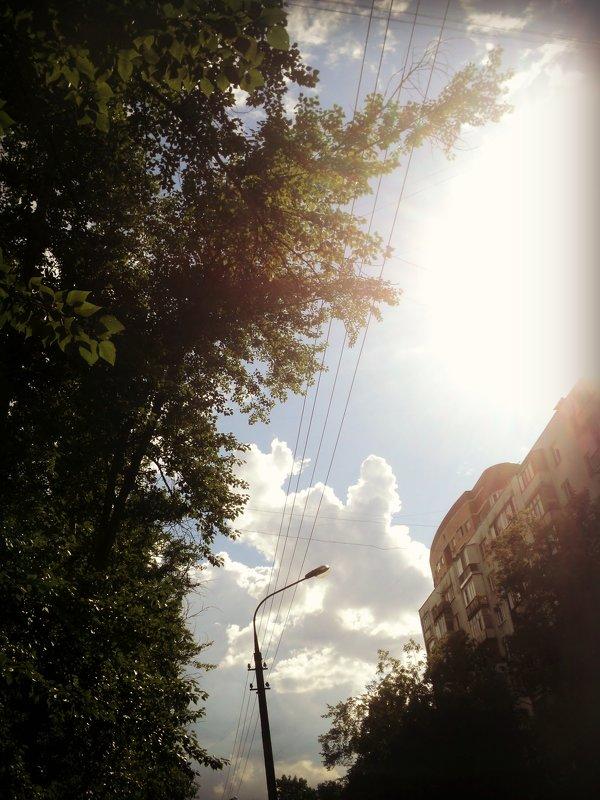 И снова городское небо! - Ольга Кривых