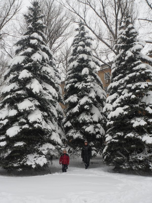 зима 2013 - filya zub