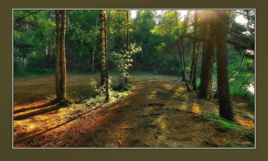 Вечером у лесного озера - Диана Буглак