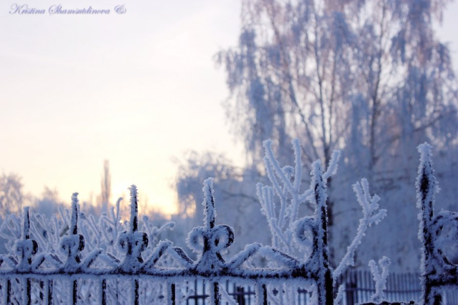 Зимнее утро - Кристина Шамсутдинова